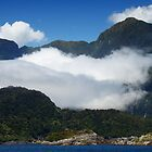 Doubtful Sound by davidandmandy