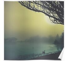 Fog on the Lake Poster