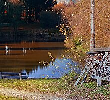 Romantic bench at the pond II | waterscape photography by Patrick Jobst