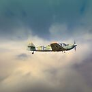Messerschmitt Bf 108 Taifun  by larry flewers