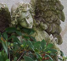 Old Garden Angel Statue by rpwalriven