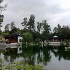 Chinese Garden by piratice