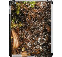 raindrops in spiderweb iPad Case/Skin