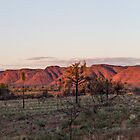 Kings Canyon Panorama by Linda Lees