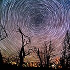 Beautiful Polaris Star Trails Over Burnt Forest by Gavin Heffernan