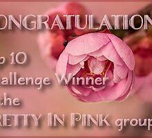 Proposed top 10 banner - Pretty in Pink by Celeste Mookherjee