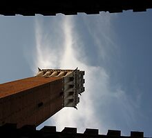Torre del Mangia 1 by solanna7