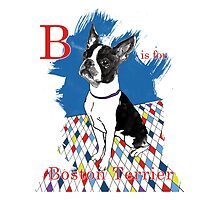 B is for Boston Terrier II by Ludwig Wagner