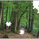 Woods Jigsaw by Aheroy