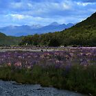 Te Anau by davidandmandy