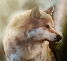 The Wolf by Xnvy