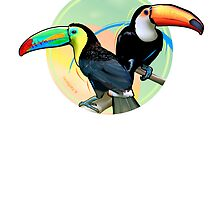 Birds of Paradise - Toucan by kfvisuals