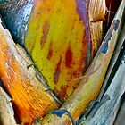 """""""Palm Abstract II"""" by AlexandraZloto"""