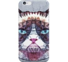 abstract cat iPhone Case/Skin