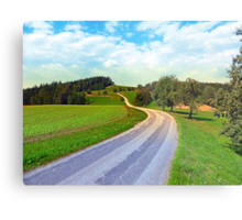 Apple trees along the country road | landscape photography Metal Print