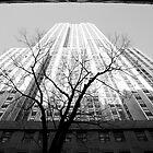 New York #11 by Georgia Laughton