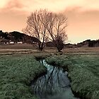A stream, dry grass, reflections and trees II | waterscape photography by Patrick Jobst