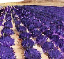 Lavender Study - Marignac-en-Diois by Anastasiya Malakhova