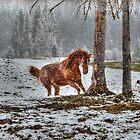 Snow Spirit by Skye Ryan-Evans