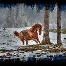 Snow Spirit (Grunge) by Skye Ryan-Evans