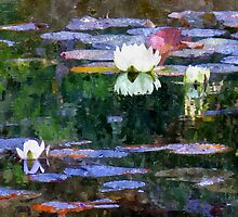 Lotus Lights by CanopyGallery