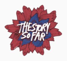 The Story so Far  by zxvwn