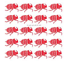 RED BEETLES Photographic Print