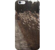 Border Patrol iPhone Case/Skin