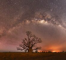 Boab Trees, Bushfires and Bright Stars by Rod Hartvigsen