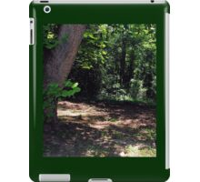 Mystical Forest iPad Case/Skin
