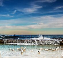 Bath Time - Newcastle NSW Australia by Beth  Wode