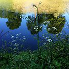 Abstractions & Reflections by HeklaHekla