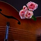 Roses and Guitar by homendn