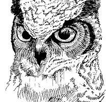 Owl by kkitkat