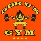 Goku's Gym 02 by Baznet