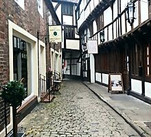 Cobblestone English Alleyway by olive-tree