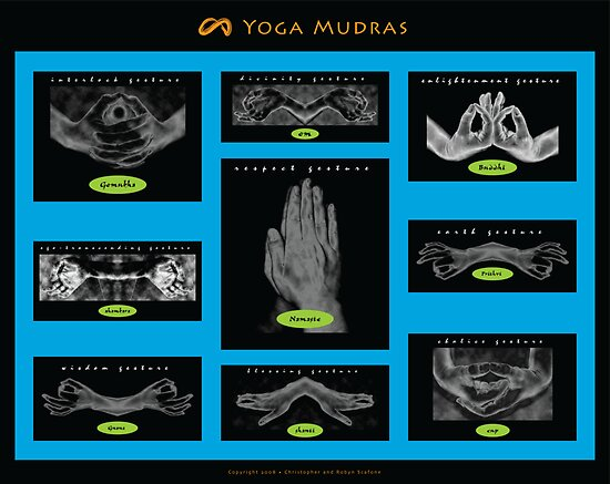 Mudra Collection (2008) by Robyn Scafone
