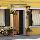 Colors of Burano 2 by Elena Skvortsova