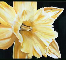 Daffodil Addict by FeliciaBartley