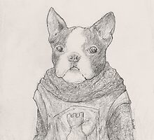 The Boston Terrier of Battle by betsystreeter