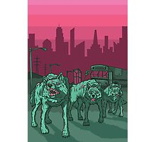 Radioactive Wolves of Chernobyl Photographic Print