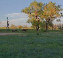 Grasslands at Golden Hour by InTheMomentArt