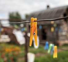 yellow Clothespin by mrivserg