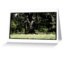 Elephant Trunk Tree at Wolf Moon's Hollow Greeting Card