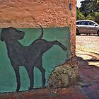 Stray dog​​ by Maria  Gonzalez