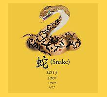 Snake by Nornberg77