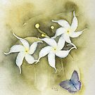 Star Jasmine with Lavender Blue Butterfly by Ray Shuell