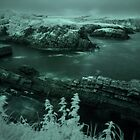 Stackpole Quay,Pembrokeshire,Infra Red by rennaisance
