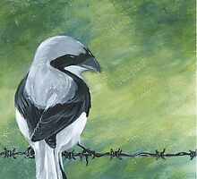 Shrike on a Wire by KoreanRussell