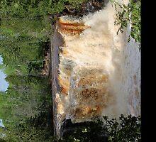 Upper Falls by lorenvictoria
